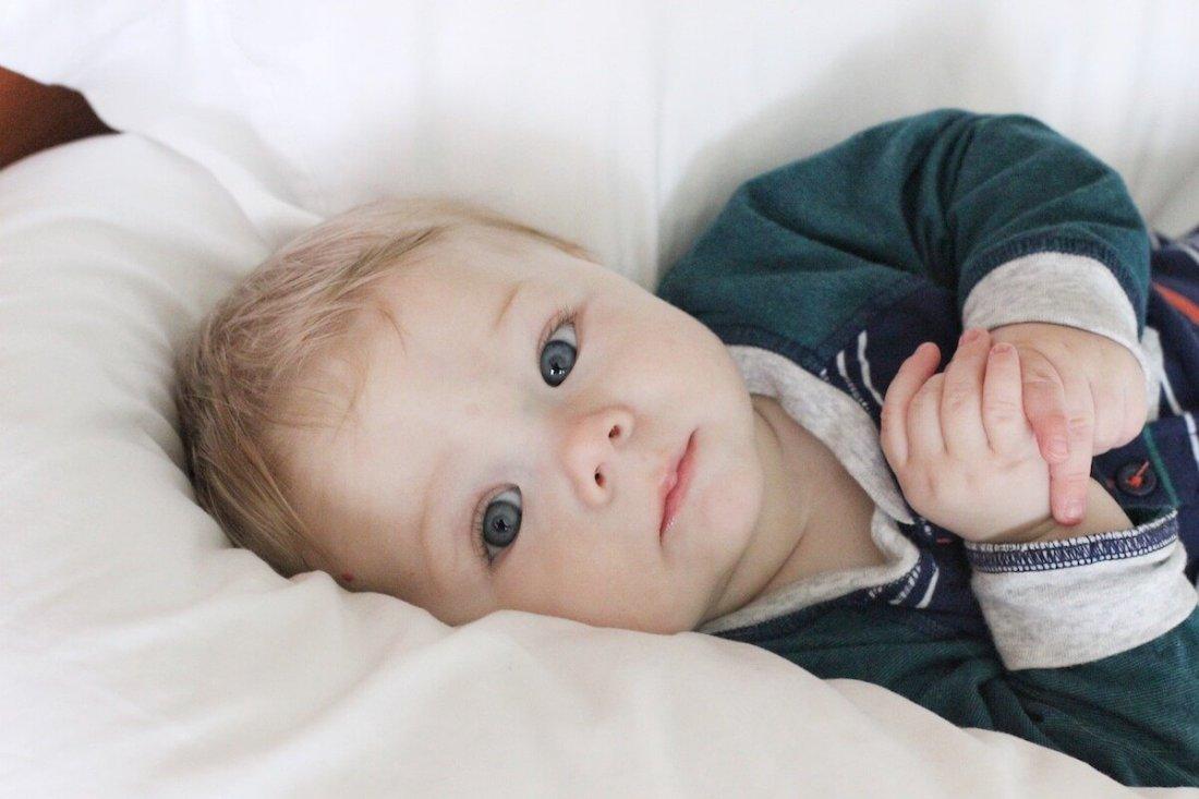 Ben, 7 months old