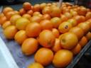Orange overload!