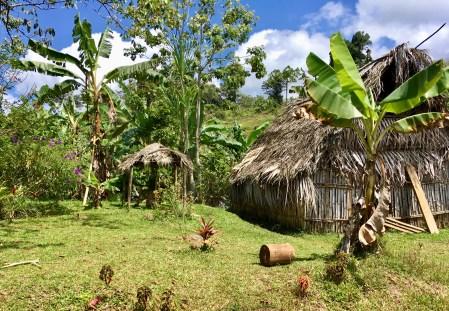 Indigenous abode.