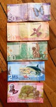 Colorful Costa Rican currency features local wildlife.