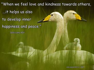Showing Loving Kindness Contributes to Our Happiness