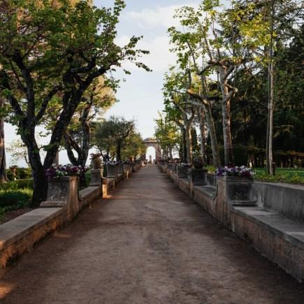 chemin longeant des arbres