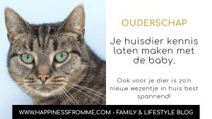 De kennismaking van je huisdier en de baby.