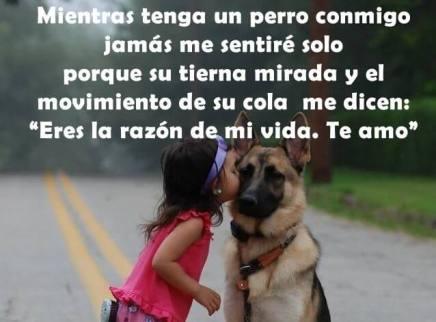 perros-ayuda-a-la-depresion