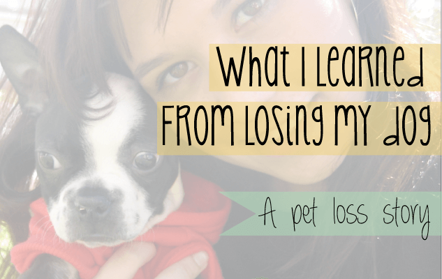 What I learned from losing my dog to cancer: A story of pet loss