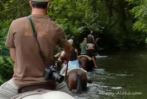 深い川を馬で歩く