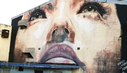 カカアコの人気のウォールアートをトロリーから見学|気をつけたいことは?