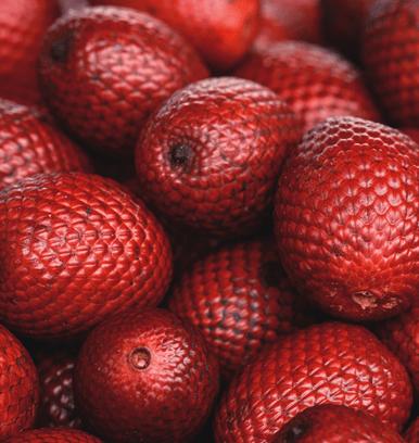 スタイルアップフルーツ