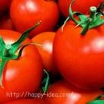 トマト缶のホールとカットと生トマトの違いや使い分け1缶にトマト何個分?