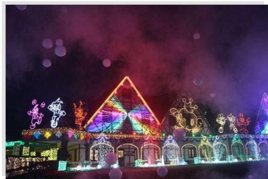 東京ドイツ村 イルミネーション 光と音のショー