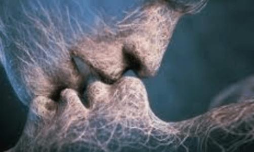 интимна съвместимост според зодията