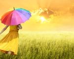 Не е нужно да усложняваме нещата: Как да живеем просто и да сме щастливи с това, което вече имаме