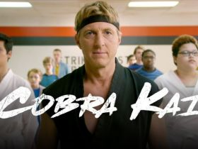 Cobra Kai YouTube Red Premium Season 1 All Episodes Complete Download In Hindi and English 720p HD.