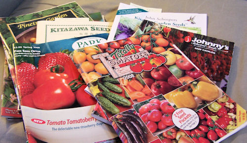 old seed catalogs