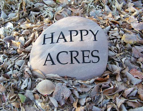 Happy Acres stone