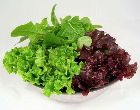Trio of leaf lettuces