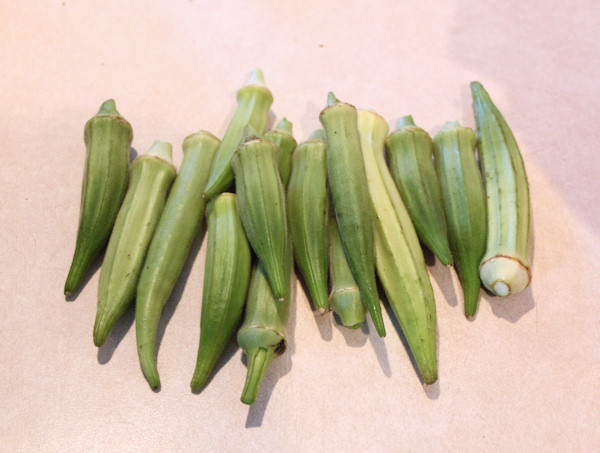 okra harvest from 2011