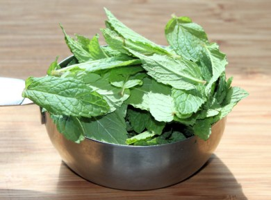 spearmint for pesto