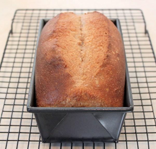 Spelt Sourdough Sandwich bread