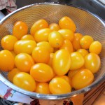 Golden Rave tomatoes