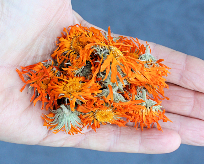 dried Calendula flowers
