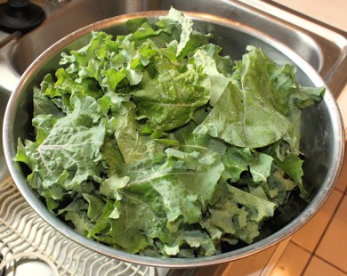 kale cutup for chips