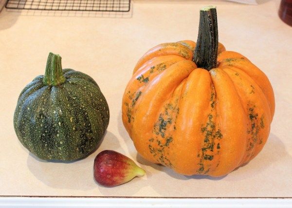 Kumi Kumi squash with Brown Turkey fig