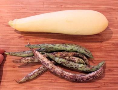 Enterprise squash and Rattlesnake beans