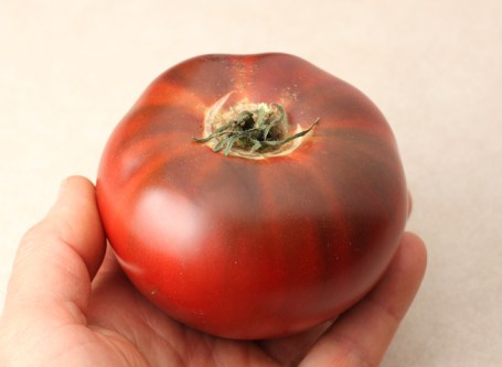heirloom tomato from local grower