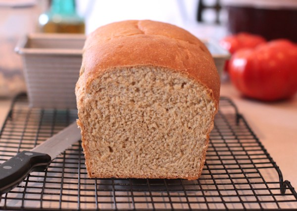 Classic 100% Whole Wheat Bread