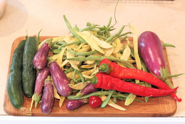 mixed August harvest