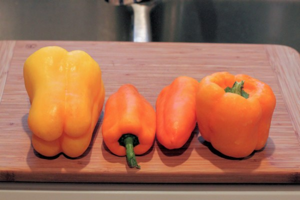 Flavorburst, Orange Blaze and Gourmet bell peppers