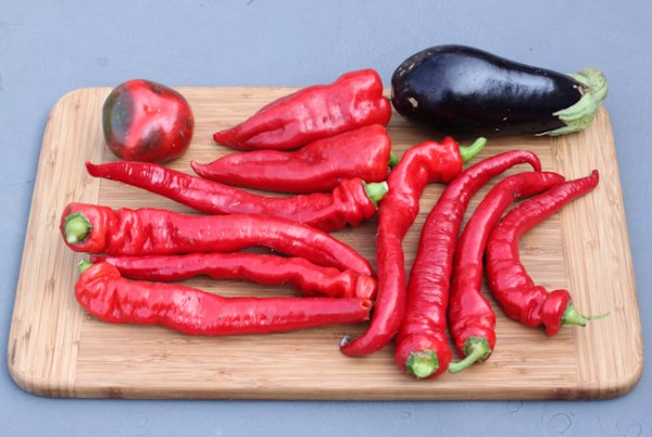 mix of Italian peppers and eggplant