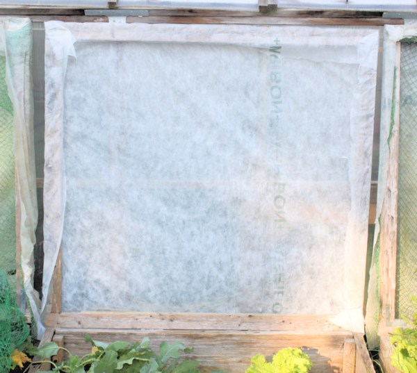 another view of Agribon covered cold frame lid