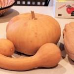 Pumpkin Smackdown 2014