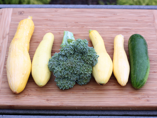 first yellow squash and broccoli of 2015