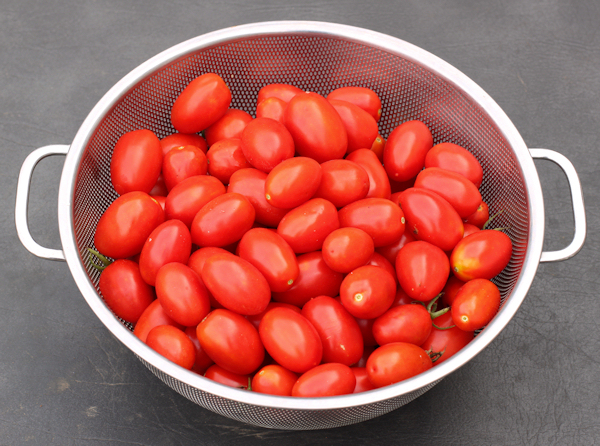 harvest of Juliet tomatoes