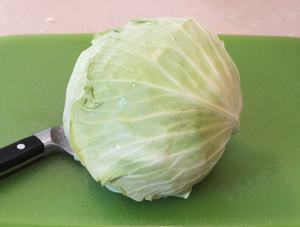 KY Cross cabbage