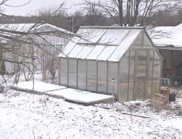 snow on the greenhouse and cold frames