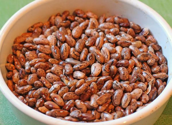 dried Rattlesnake beans