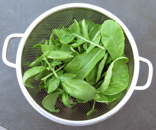 arugula and basil for pizza