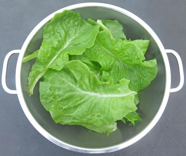 crisphead lettuce leaves