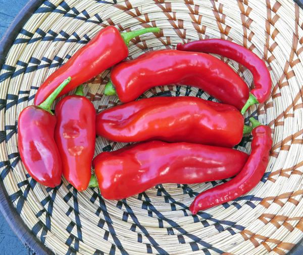 Corno di Toro Rosso, and Jimmy Nardello's peppers