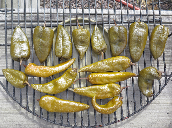 green peppers after smoking