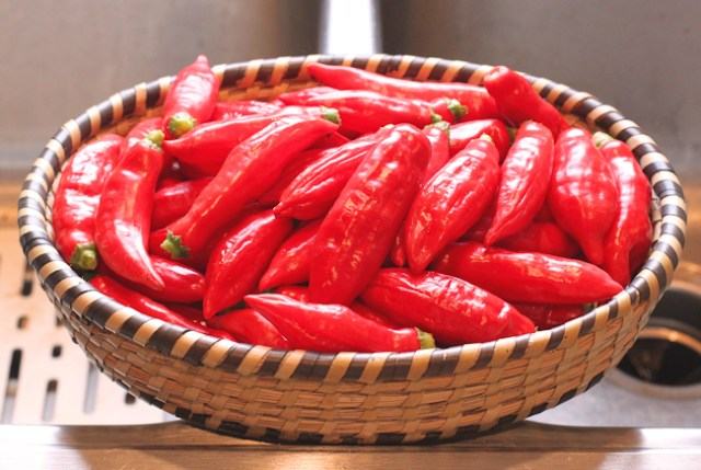 Aji Angelo peppers