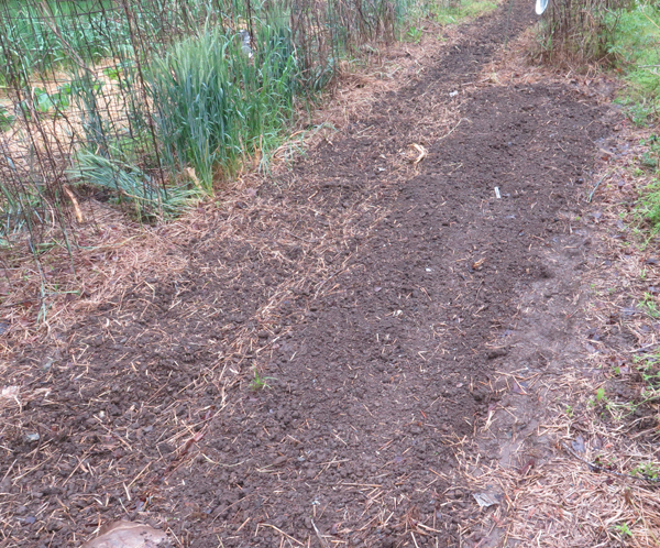 garden bed ready for planting