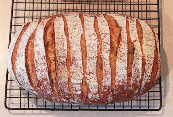 Kamut bread with zebra score