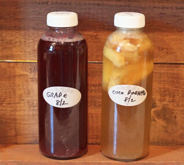 bottled and flavored kombucha