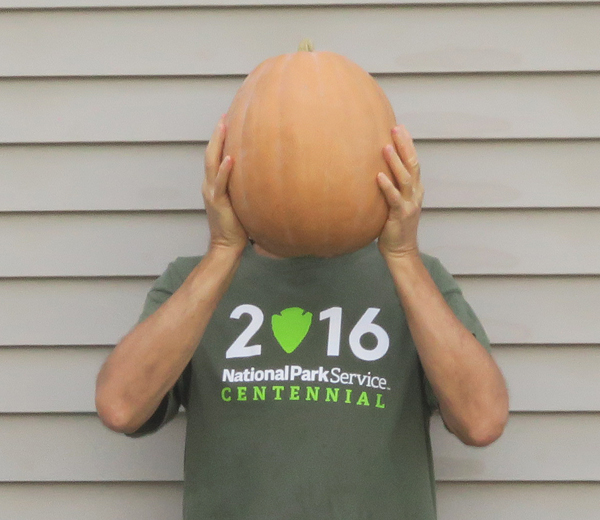 Dickinson pumpkin