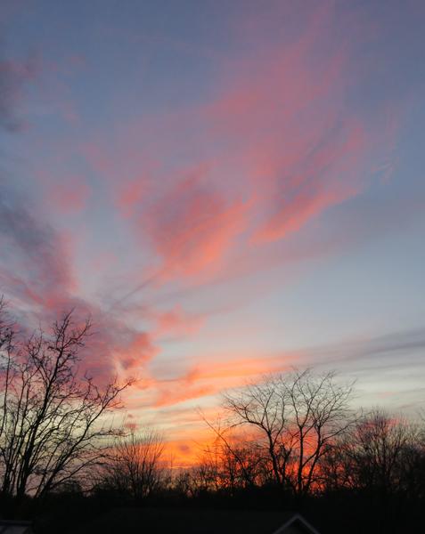 Happy Acres sunset